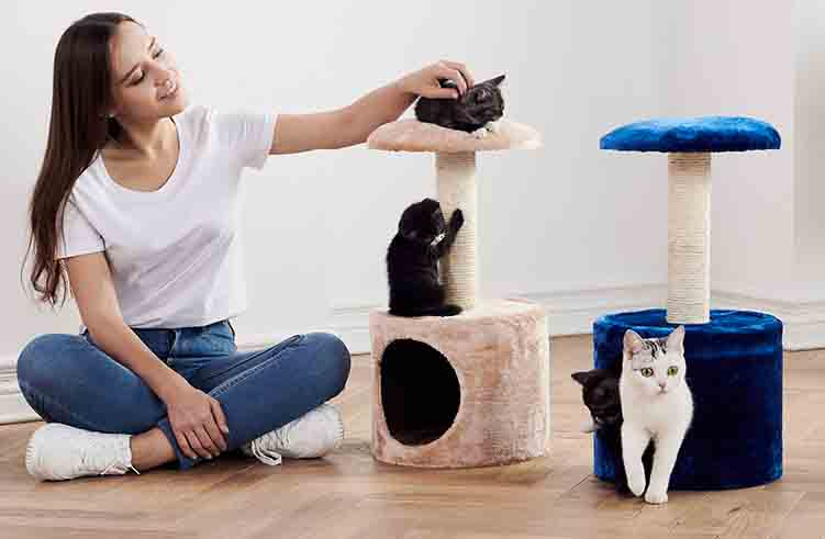 Petsbell small-scale cat tree solid wood sisal cat scracther